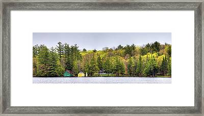 The Early Greens Of Spring Framed Print by David Patterson