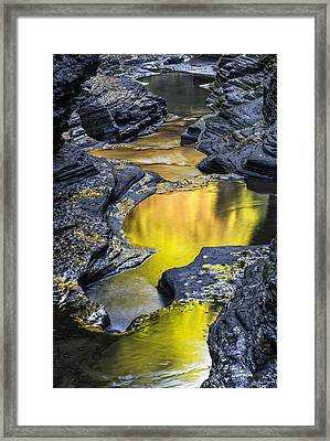 Golden Pond Framed Print by Jim Vallee