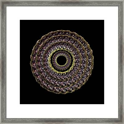 The Earthtone Infinity Of Rose Framed Print by Jacqueline Migell