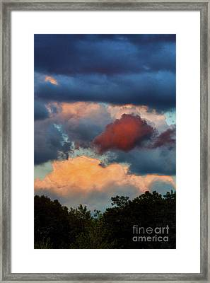 The Edge Of Forever Framed Print by Robyn King