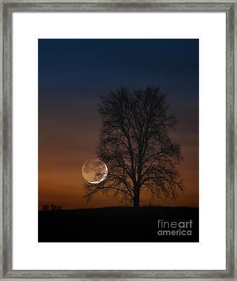 Edge Of A Dream Framed Print by Scott Thorp