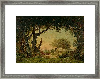 The Edge Of The Forest At Fontainebleau Framed Print by Theodore Rousseau