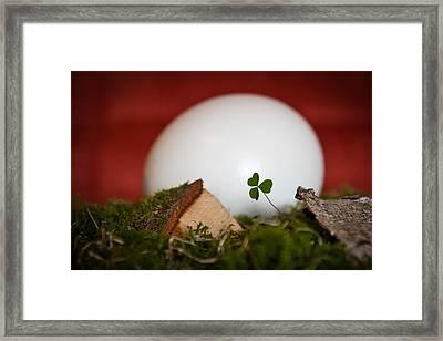 The Egg Framed Print