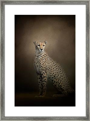 The Elegant Cheetah Framed Print
