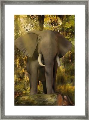 The Elephant Framed Print by Emma Alvarez
