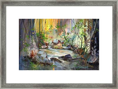 The Enchanted Pool Framed Print