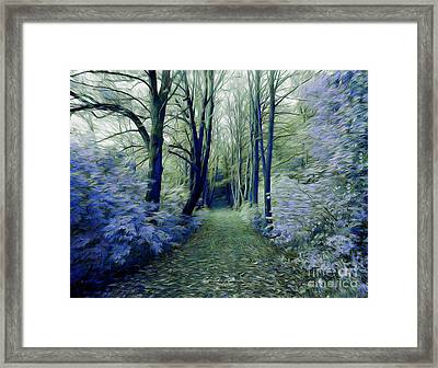 The Enchanted Wood Framed Print by Chris Armytage