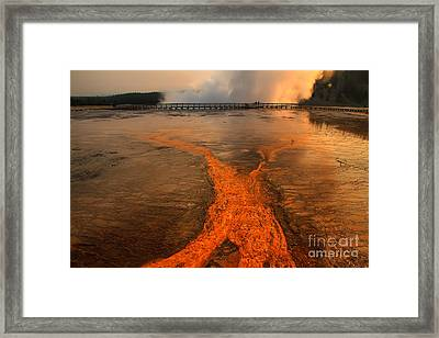 The Enchantment Of Grand Prismatic Spring Framed Print