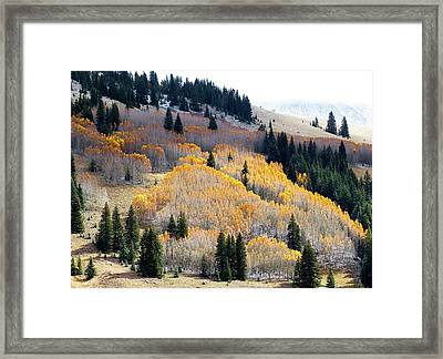 The End Of Fall Framed Print
