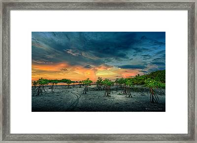 The Endless Trail Framed Print