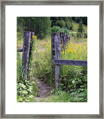 The Entrance Framed Print