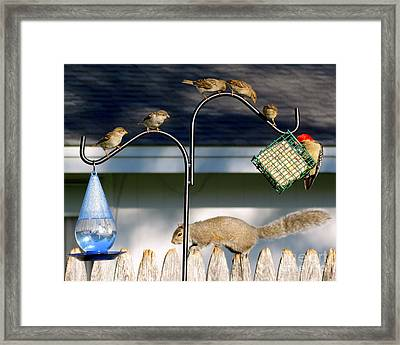 The Epitome Of Patience And Sharing Framed Print
