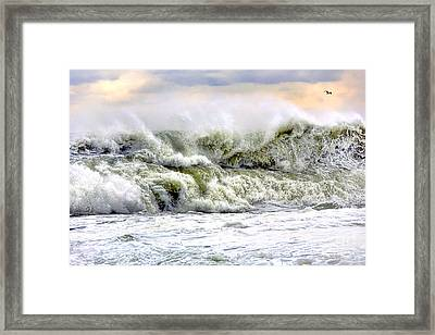The Escape Framed Print by Olivier Le Queinec