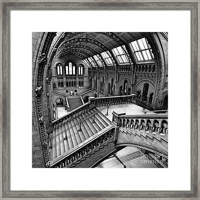 The Escher View Framed Print by Martin Williams