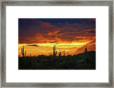 The Essential Beauty Of The Southwest  Framed Print