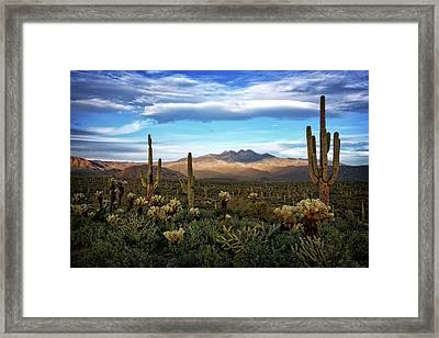 Framed Print featuring the photograph The Evening Glow  by Saija Lehtonen