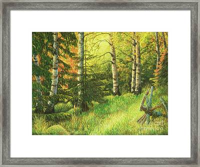 The Evening Light Framed Print by Veikko Suikkanen