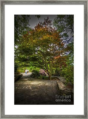The Evening Walk Framed Print
