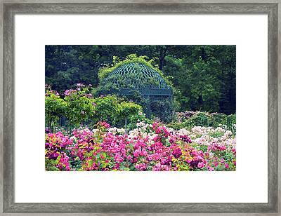 The Extravagant Garden Framed Print by Jessica Jenney