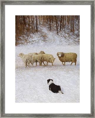 The Eye Framed Print by Mitch Kolbe