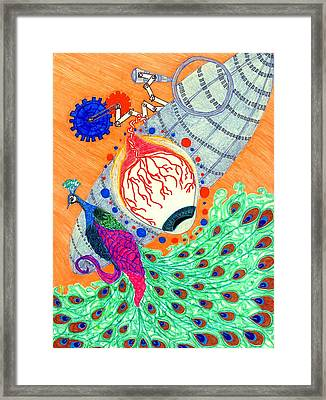 The Eye On The Peacock Framed Print by Isabel Sydow