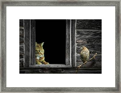 The Eyes Are On The Sparrow Framed Print by Randall Nyhof