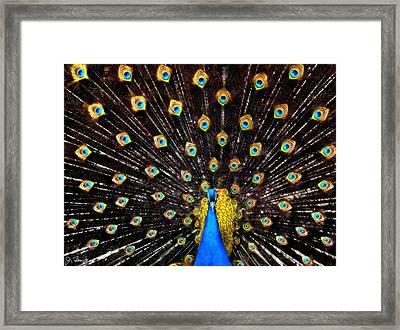The Eyes Have It Framed Print by Joe Bonita
