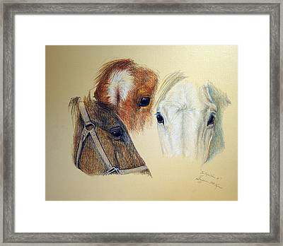Framed Print featuring the drawing The Eyes Have It by Suzanne McKee