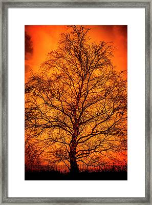 The Fable Known As Hell Framed Print
