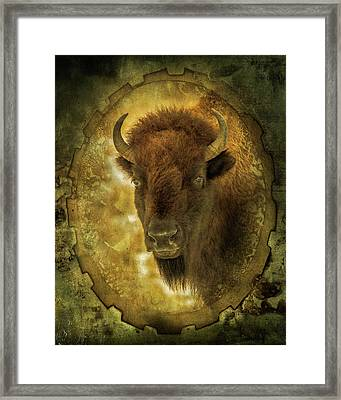 The Face Of Tatanka Framed Print by TL Mair