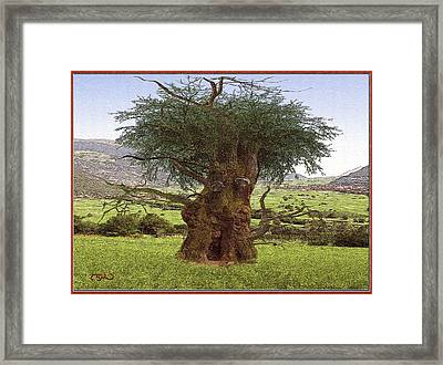 Framed Print featuring the digital art The Face Of The Tree by Pemaro