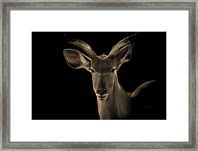 The Face Off Framed Print