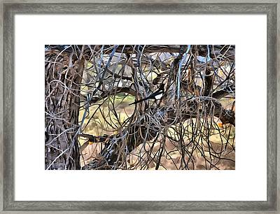 The Fall Magpie 2 Framed Print
