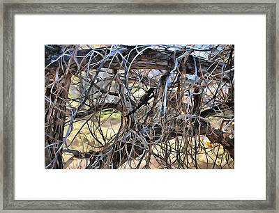 The Fall Magpie 4 Framed Print