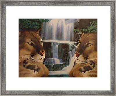 The Fall Of A Reflection  Framed Print by Jamie Preston