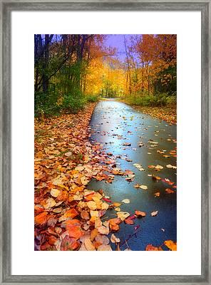 The Fallen Leaves Of Autumn Framed Print by Tara Turner