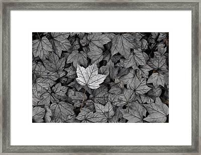 The Fallen Framed Print by Mark Fuller