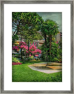 Framed Print featuring the photograph The Fancy Swiss South-west by Hanny Heim