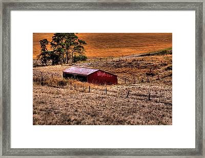 The Farm Framed Print by David Patterson