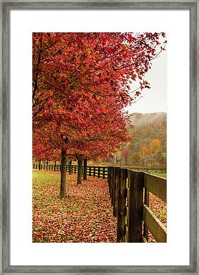 The Farm In Fall Framed Print by Sallie Woodring