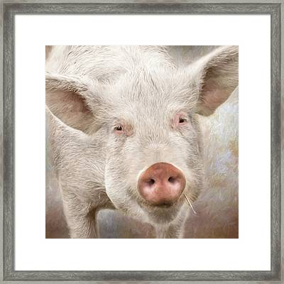The Farmer's Hog Framed Print