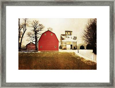 The Favorite Framed Print by Julie Hamilton