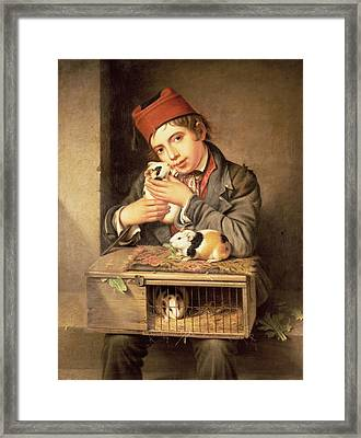 The Favourite Framed Print by George Stevens