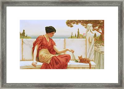 The Favourite Framed Print