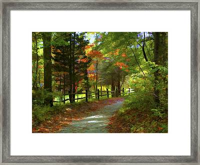 The Fence Framed Print by Jeff Breiman