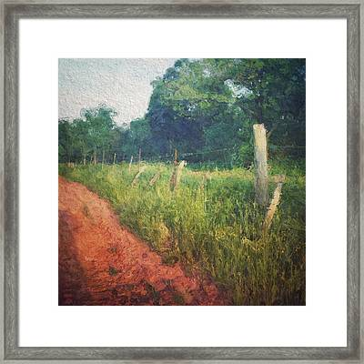 The Fence Posts Along The Road Framed Print