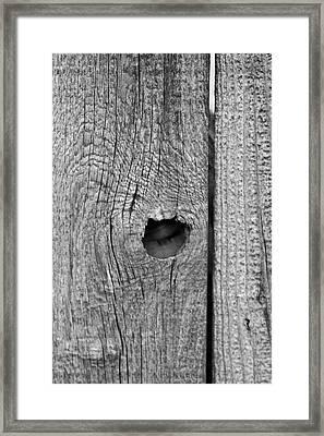 The Fence That Sleeps Framed Print by Douglas Barnett
