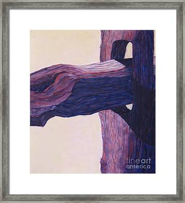 The Fencepost Framed Print by Judith Espinoza