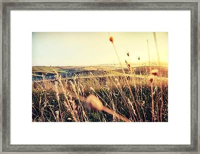 The Fertile Soil Framed Print