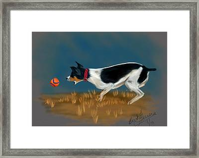 The Fetch  Framed Print